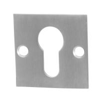Cilinderrozet GPF0902.08 50x50x2mm RVS geborsteld