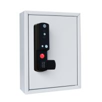 Mauer sleutelkastje 10 haken met ESLcam Mifare