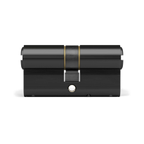 Profielcilinder DOM ix Teco SKG*** modulair, dubbele cilinder zwart