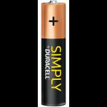 Alkaline AAA-batterij van Duracell