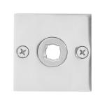 Rozet GPF1100.48 50x50x2mm RVS gepolijst