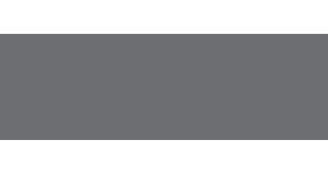 Salvus Logo